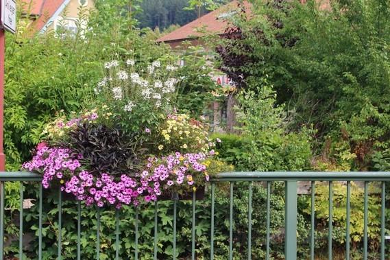 Mitteltal (25)