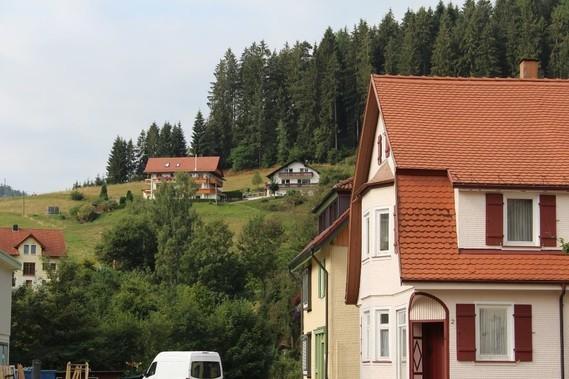 Mitteltal (18)