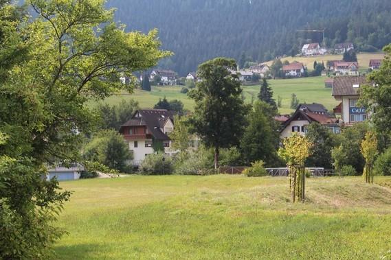 Mitteltal (45)