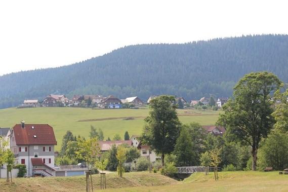 Mitteltal (66)