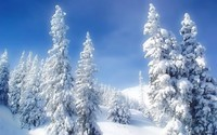 winter2 (33)