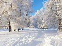 winter2 (34)