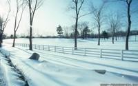 winter2 (35)