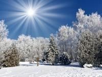 winter2 (28)