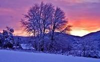 winter2 (30)