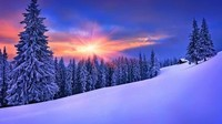 winter2 (11)