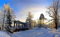 winter2 (19)