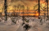 winter2 (13)