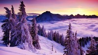 winter2 (21)