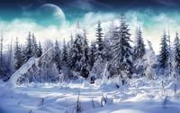winter2 (37)