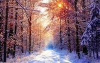 winter2 (40)