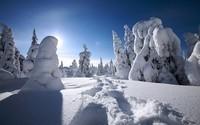 winter2 (45)