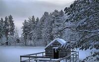 winter2 (39)