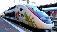 TGV (26)