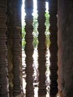 Angkor2 (14)