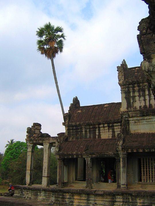 Angkor2 (53)