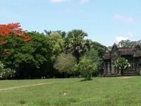 Angkor (30)
