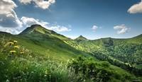 Auvergne (51)