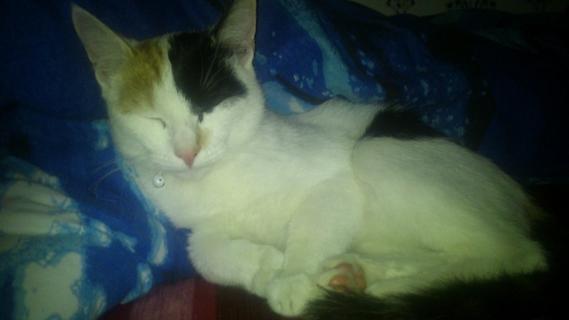 Elle dort profondement..