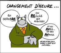 07-explique-par-le-chat