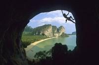 tonsai thailande