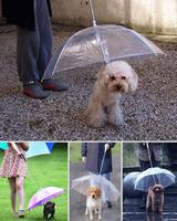 crazy-inventions-22