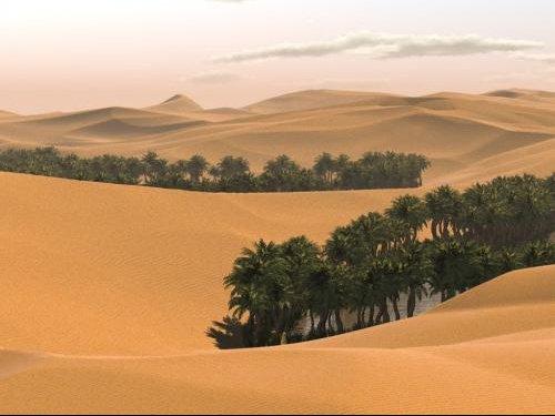 desert-8