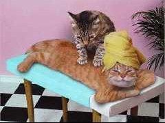 petit_massage-t1