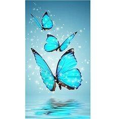 papillon neige