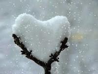 douceur hiver