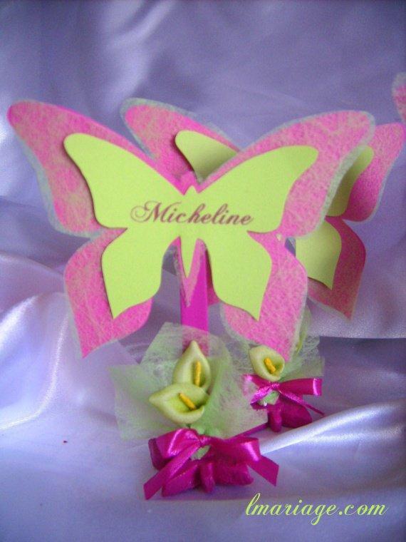 marque place papillon fushia et anis