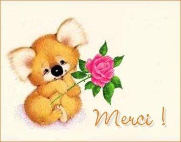 Nounours-Merci