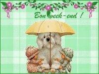 bon wwek-end - chien avec un parapluie