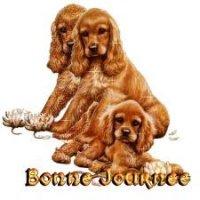 bonne journée - chiens