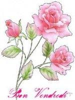 Bon vendredi - Rose