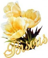 bisous fleurs jaunes