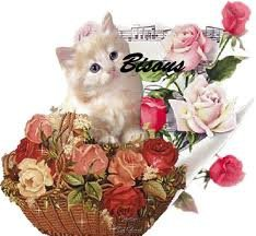 bisous chat chromo
