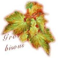 gros bisous feuilles d'automne