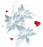 coeur et fleurs de Noël