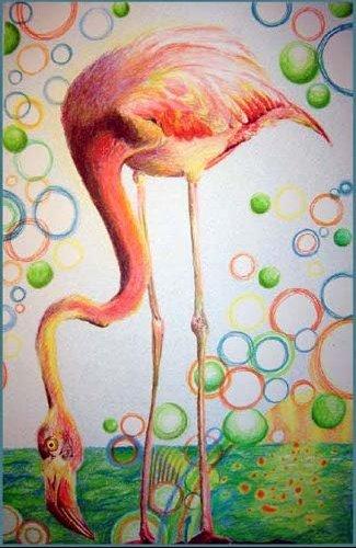 a Flamingo Sky