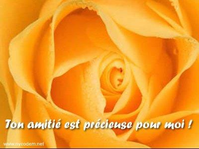 amitie_precieuse