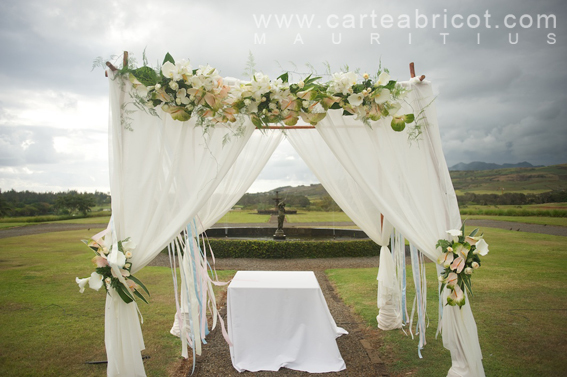 carte abricot wedding planners mauritius arch decoration