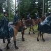 Cavalerie.