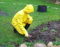 Jardinage au sec