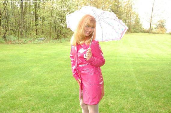 Rose sous la pluie.