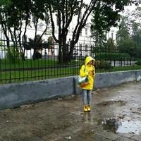 Jaune sous la pluie.