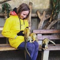 Petit Bateau et petits singes.