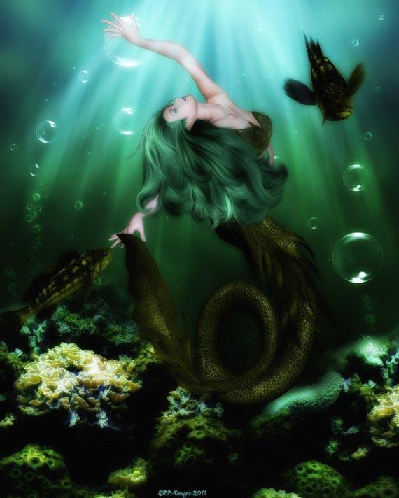 image sous l'eau