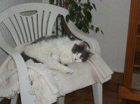 ou il est mon canapé?