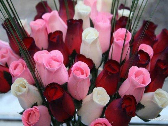 fleurs-roses-img